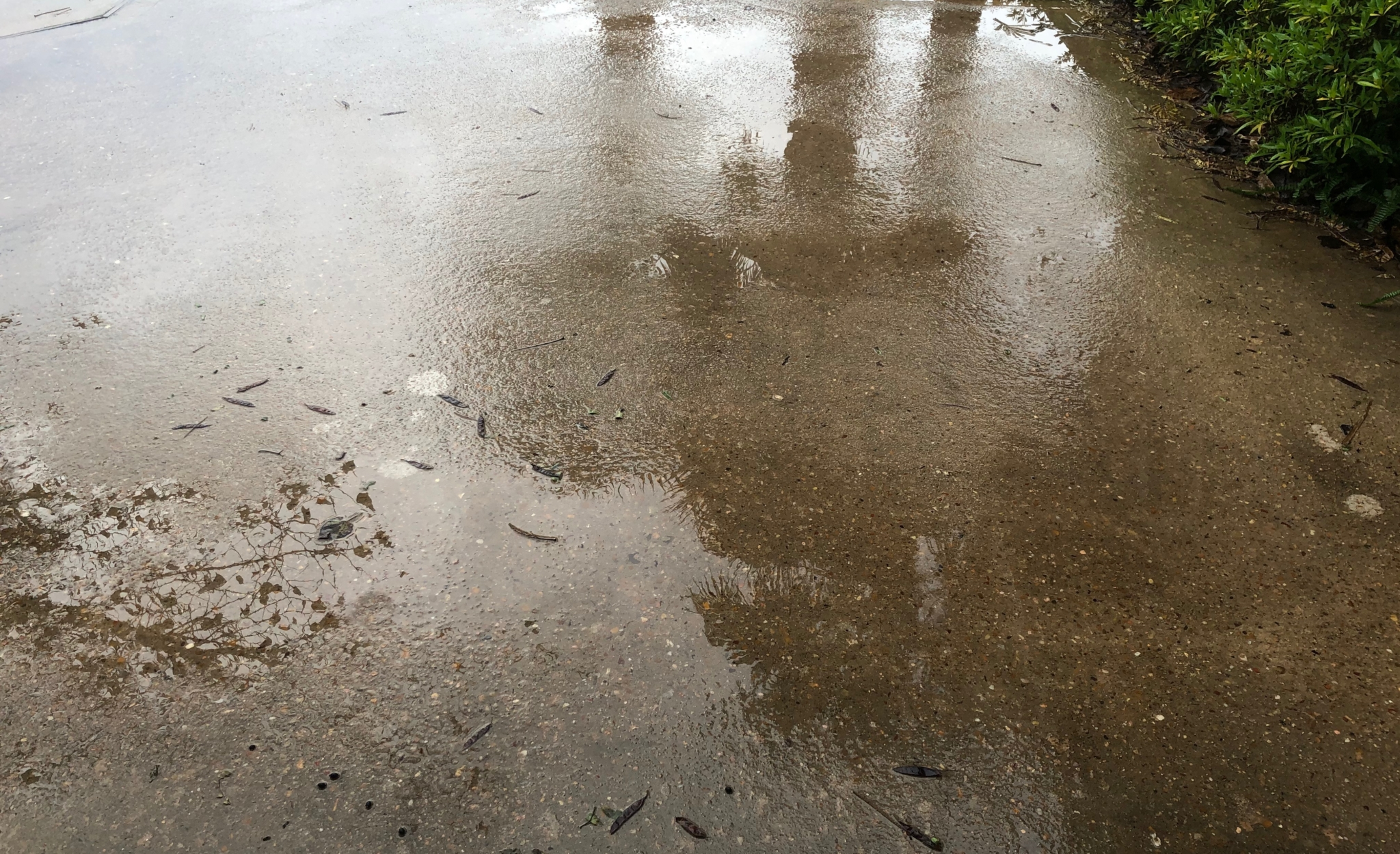 rain on wet concrete reflecting the storms of life